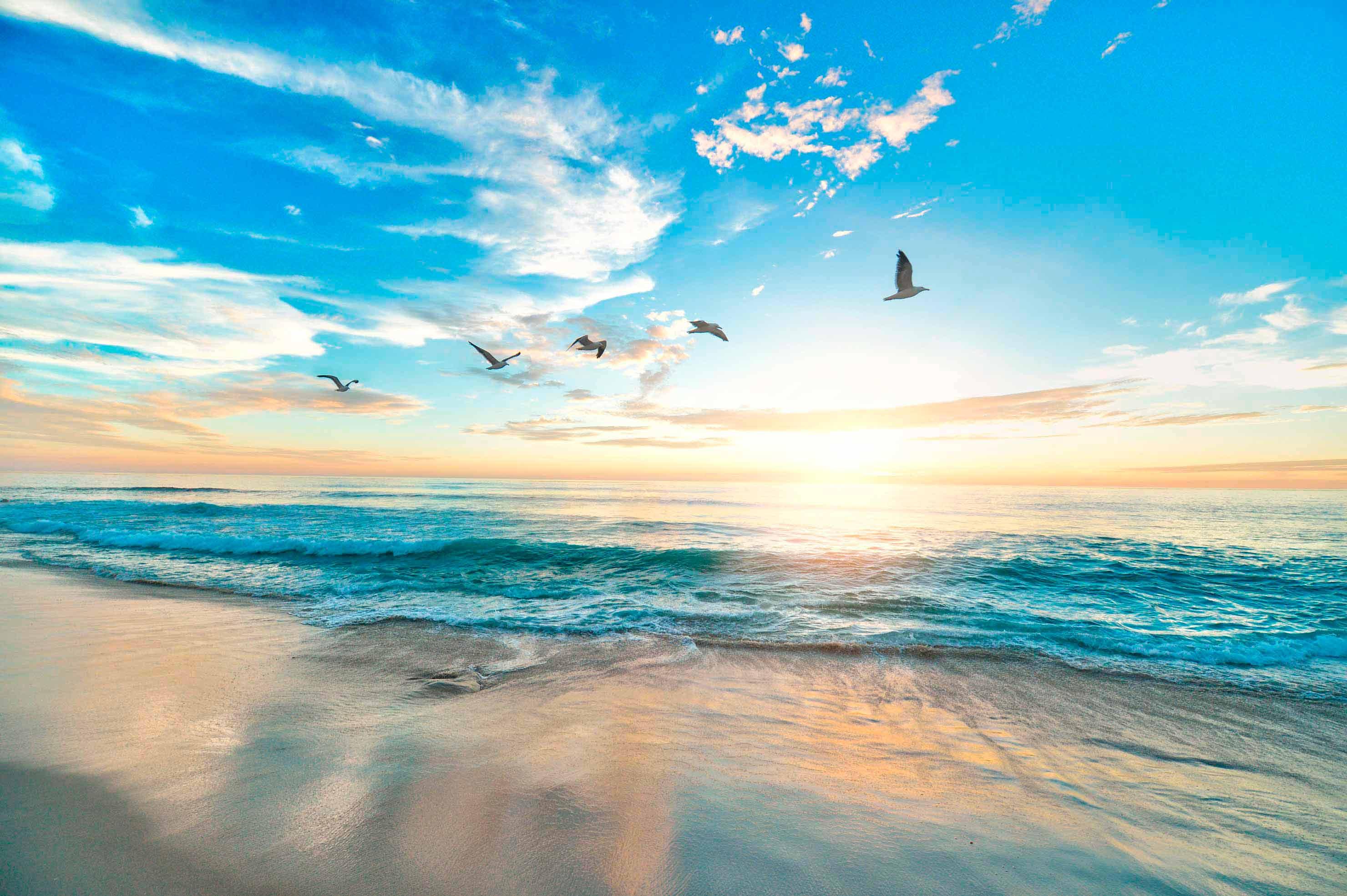 Image result for calma y serenidad