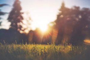serenidad-salud-blog